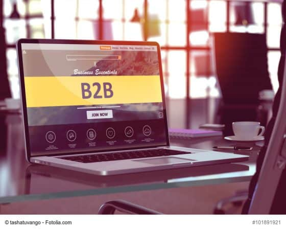 Substanziell! Online Marketing B2B