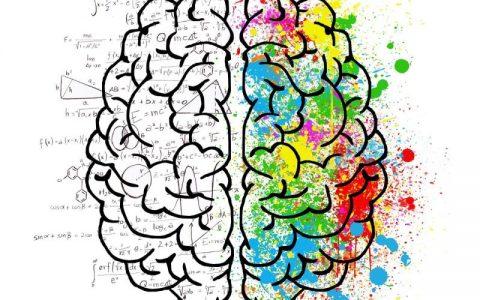 Neuromarketing: So funktioniert Ihre Werbestrategie …