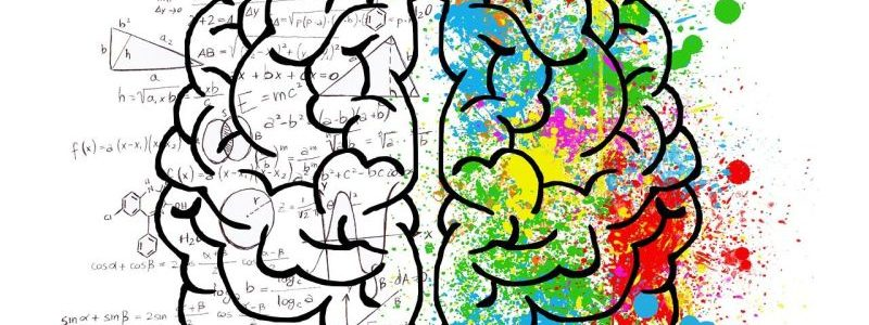 Neuromarketing: So funktioniert Ihre Werbestrategie …